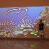 Shark Reef Inside Mandalay Bay